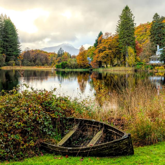 """Scottish Autumn"" stock image"