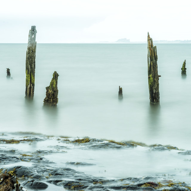 """""""The Rocks and the Posts"""" stock image"""