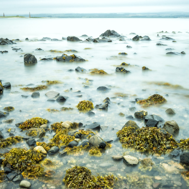 """Rocks and Seaweed at Lindisfarne"" stock image"