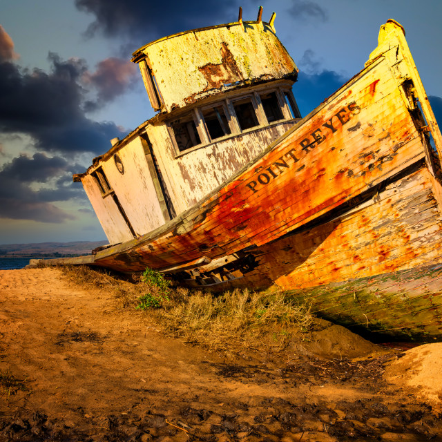 """""""S.S. Point Reyes Shipwreck"""" stock image"""