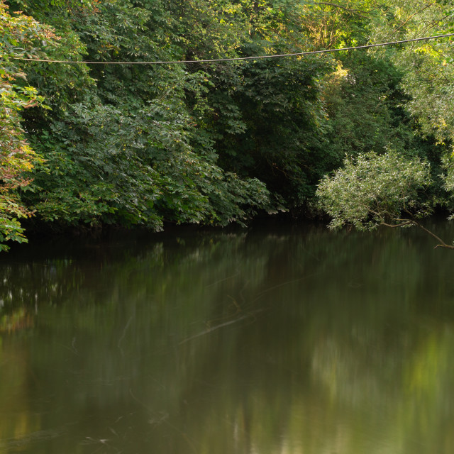 """""""Trees reflection over a river"""" stock image"""