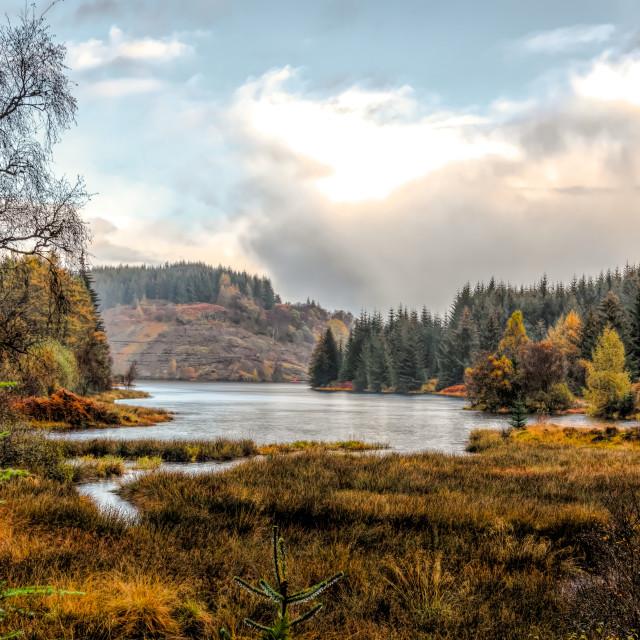 """""""Scottish Highland Autumn"""" stock image"""