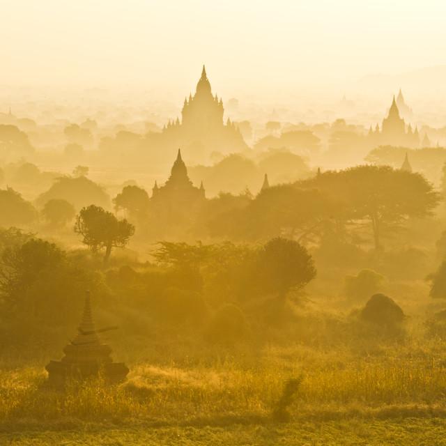 """""""The sunrise of Pagoda"""" stock image"""