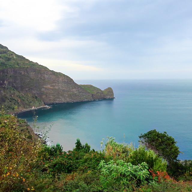 """Madeira coast"" stock image"