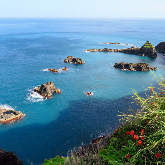 """Madeira North"" stock image"