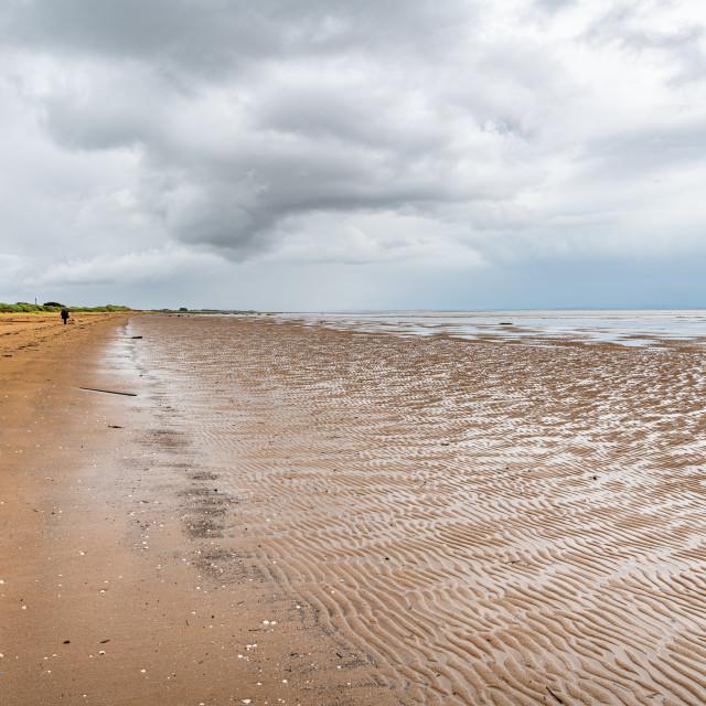 """Mersehead Sands, Dumfries & Galloway, Scotland"" stock image"