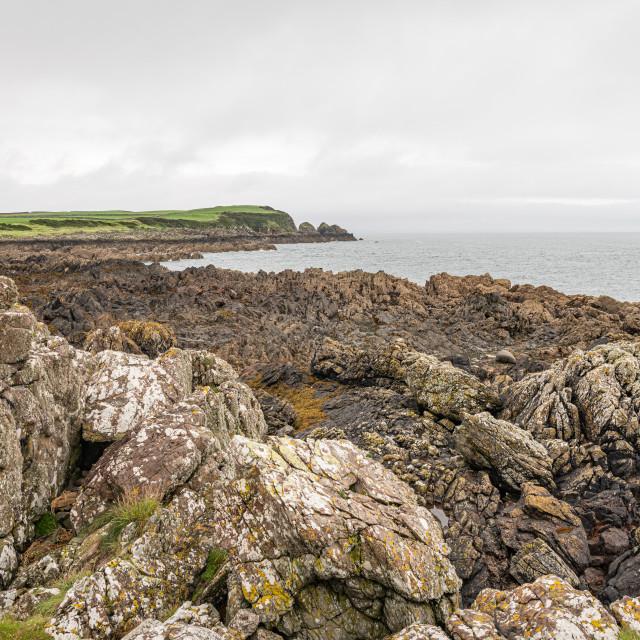 """Coastline of Garlieston Bay , Dumfries & Galloway, Scotland"" stock image"