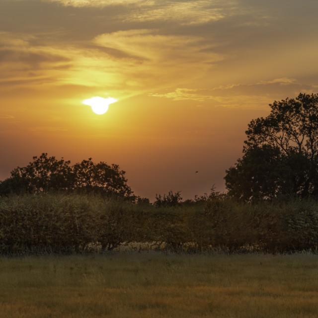 """Norfolk Sunset"" stock image"
