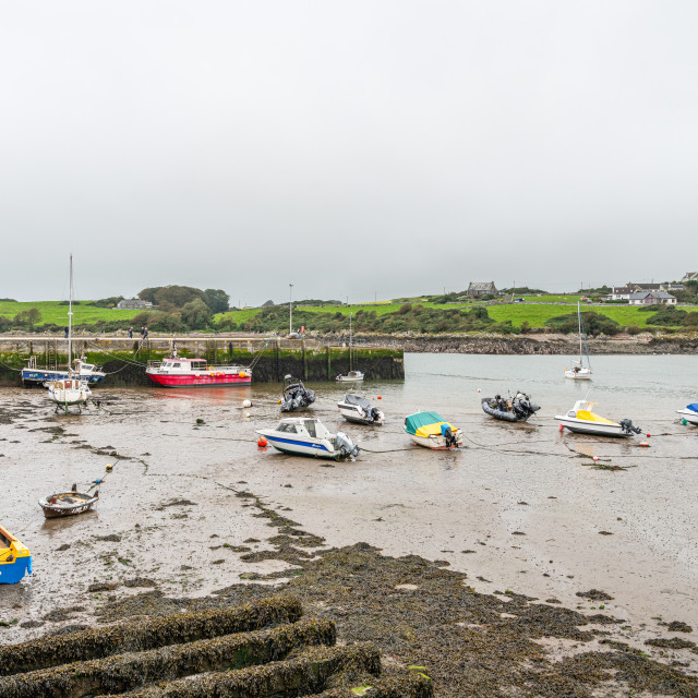 """""""Low tide in the Harbour, Isle of Whithorn, Dumfries & Galloway, Scotland"""" stock image"""