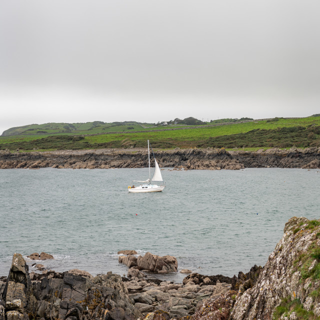 """""""Sail boat returns to the harbour, Isle of Whitehorn, Dumfries & Galloway, Scotland"""" stock image"""