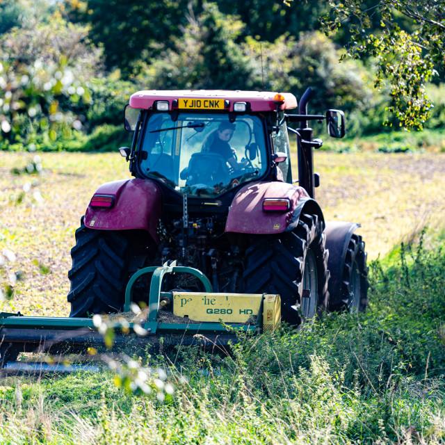 """""""Girl Farmer"""" stock image"""