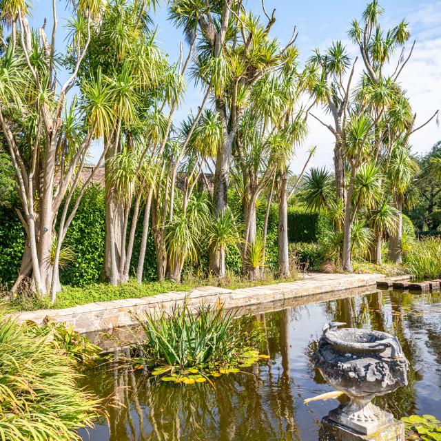 """Pond in the Botanical Gardens , Port Lagon, Dumfries & Galloway, Scotland"" stock image"
