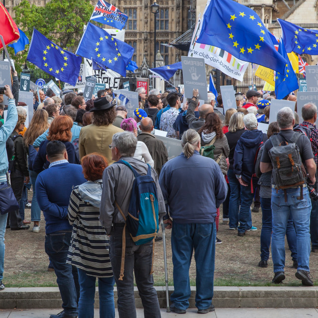 """Brexit - European Union Support Demonstration"" stock image"