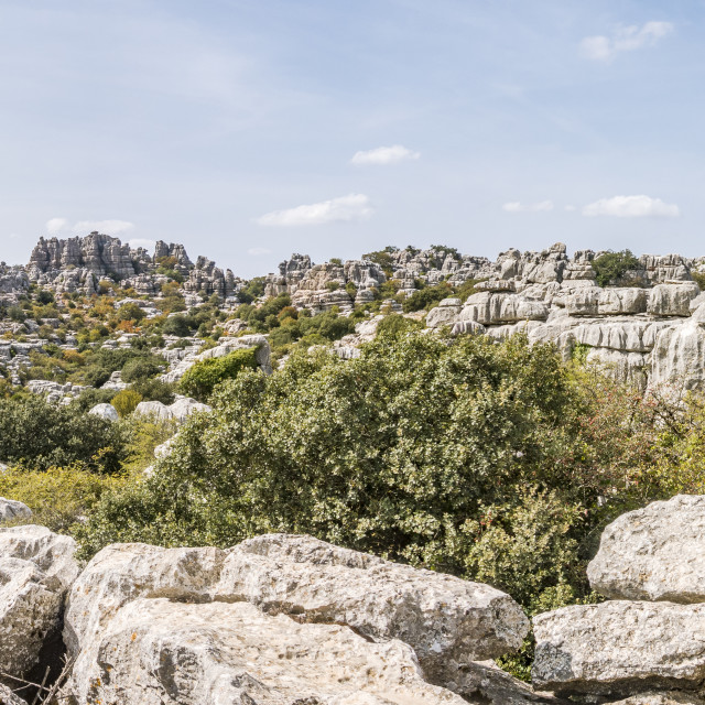 """El Torcal de Antequera , Karstic mountain nature reserve"" stock image"