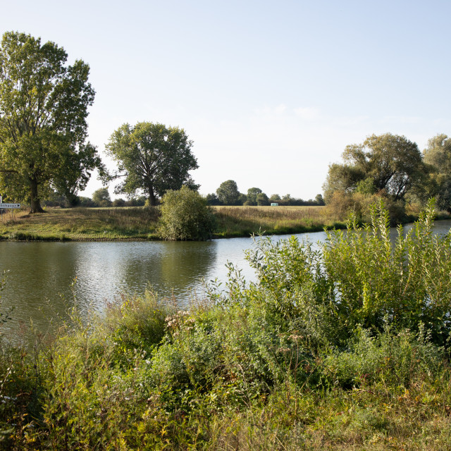 """""""River Maas waterfront countryside"""" stock image"""