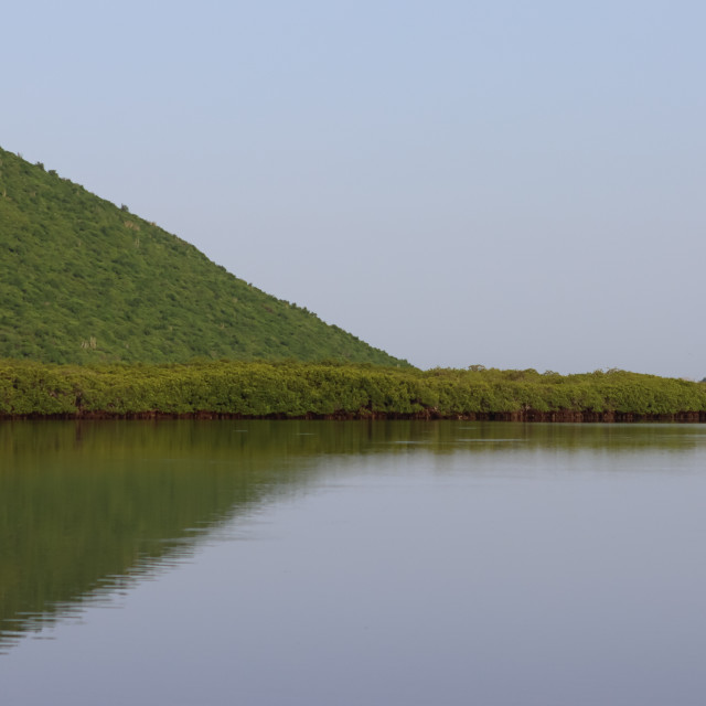 """""""Green Mangroves and Green Hills"""" stock image"""
