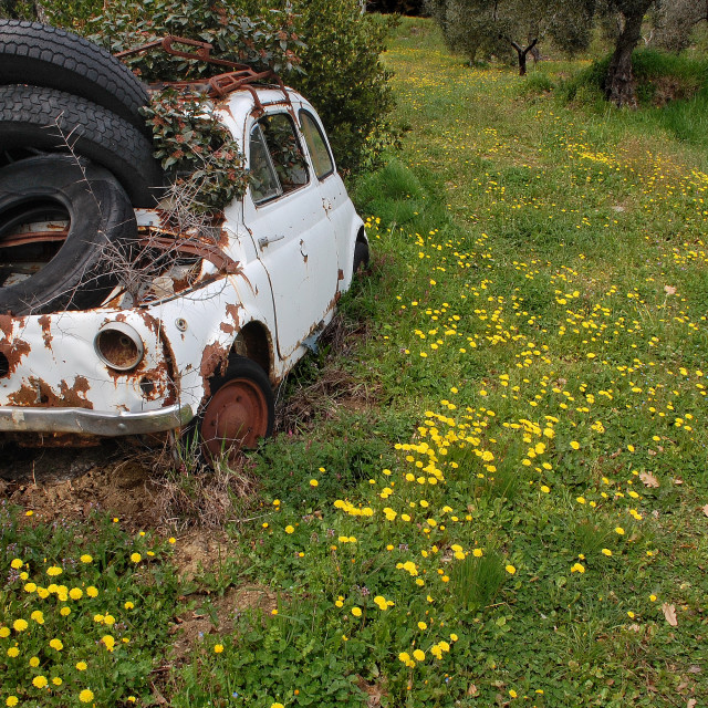 """""""A rusty old Fiat 500 in a field"""" stock image"""