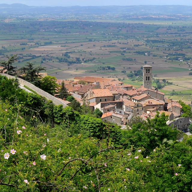 """""""View of Cortona with the Valdichiana below"""" stock image"""