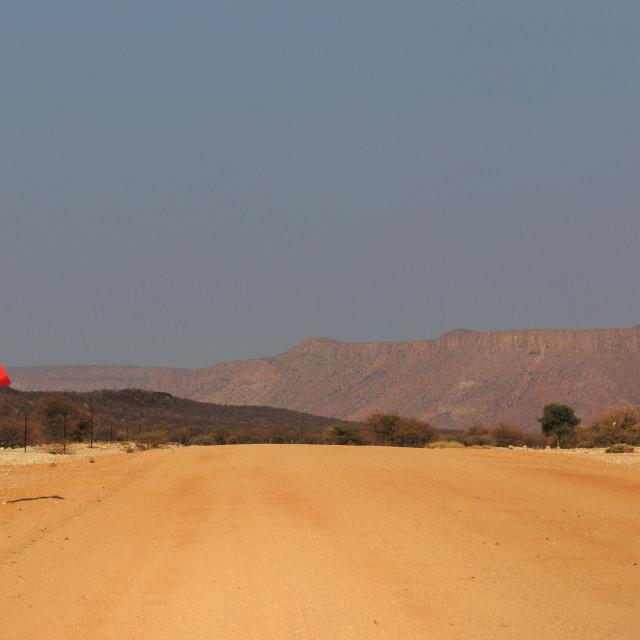 """""""Elephant road sign, Namibia"""" stock image"""