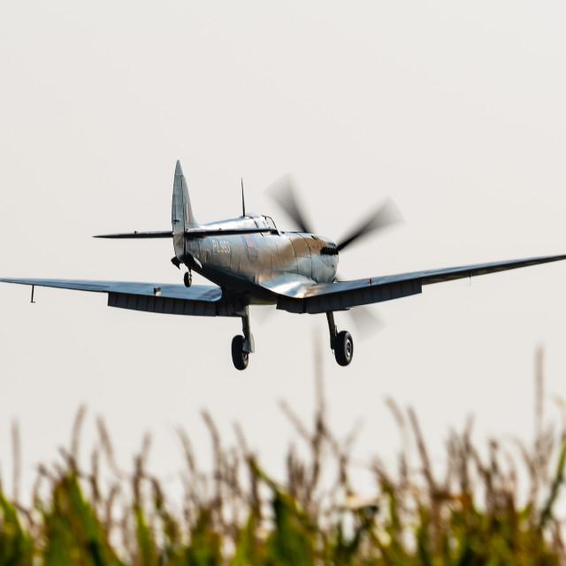 """Spitfire Landing"" stock image"
