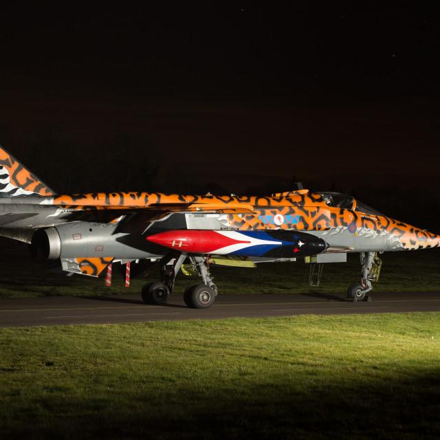 """Spotty Jaguar floodlit at night."" stock image"