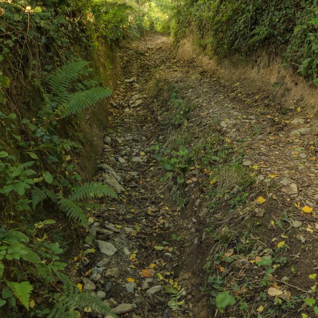 """""""Water Lane Holloway"""" stock image"""