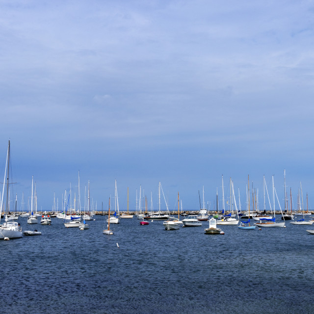 """Sailboats in Vineyard Haven harbor"" stock image"