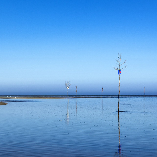 """Clam tree channel markers in Rock Harbor"" stock image"