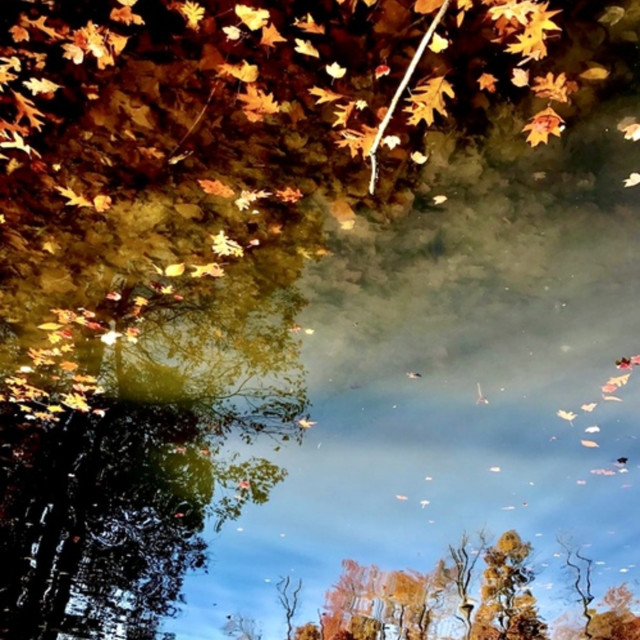 """Autumn reflections"" stock image"