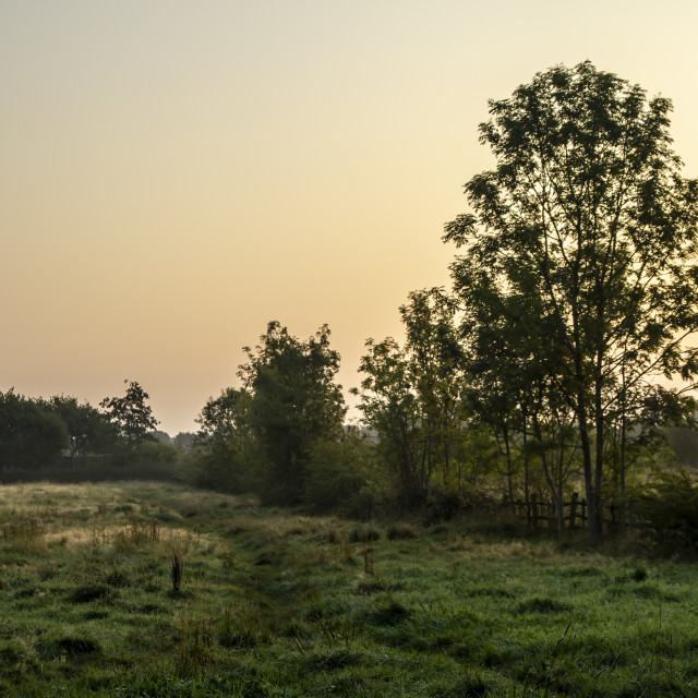 """""""Sunrise over a grassy field near Weelsby Woods in Grimsby"""" stock image"""