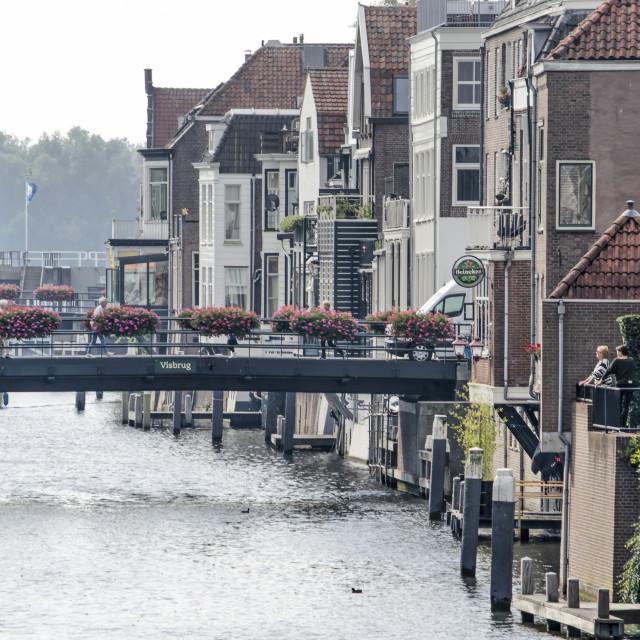 """Houses built towards Linge river"" stock image"
