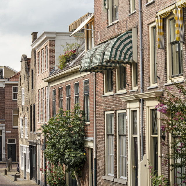 """Gorinchem old town street"" stock image"
