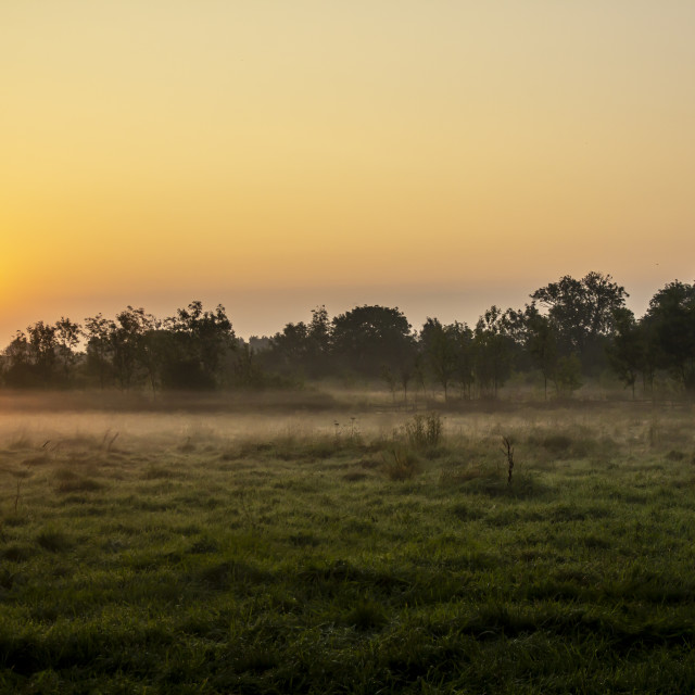 """Sunrise over a grassy field near Weelsby Woods in Grimsby"" stock image"