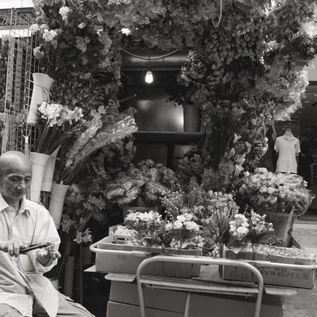 """""""The flower man in Hong Kong"""" stock image"""
