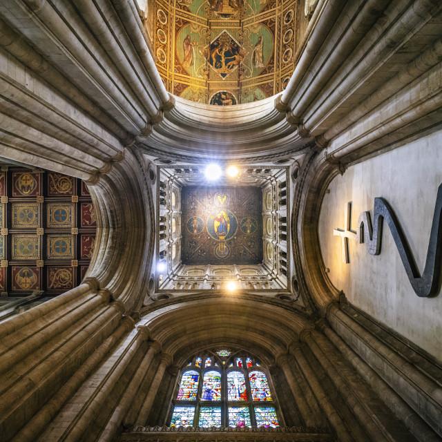 """Ely Cathedral, West Tower, Cambridgeshire UK."" stock image"