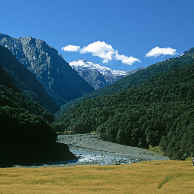 """""""Tramping in New Zealand"""" stock image"""