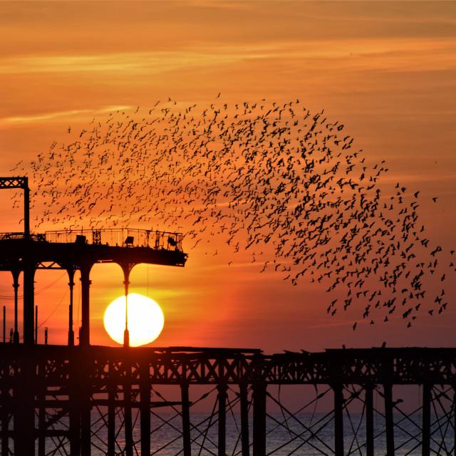 """West Pier Sunset"" stock image"