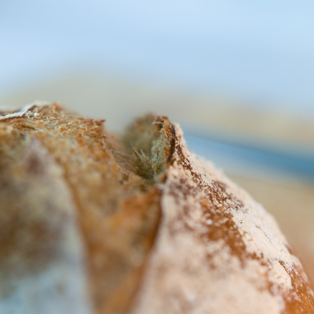 """Close-up of artisan sourdough bread"" stock image"