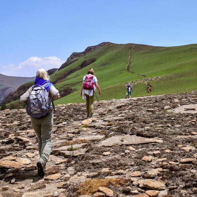 """""""Drakensberg trekking"""" stock image"""