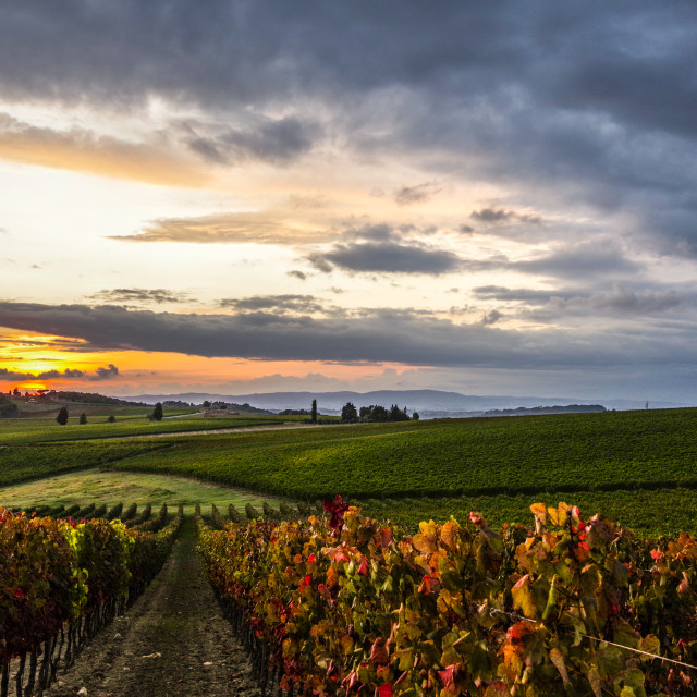 """Sunset in Tuscany"" stock image"