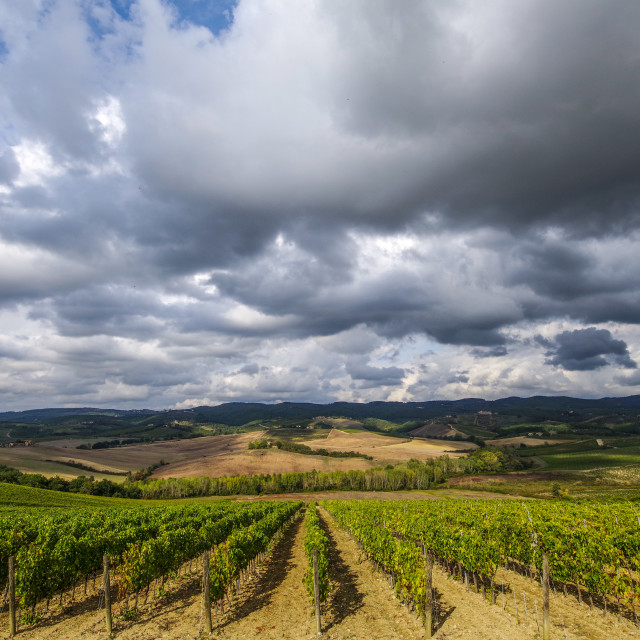 """""""Cloudy day in Tuscany"""" stock image"""