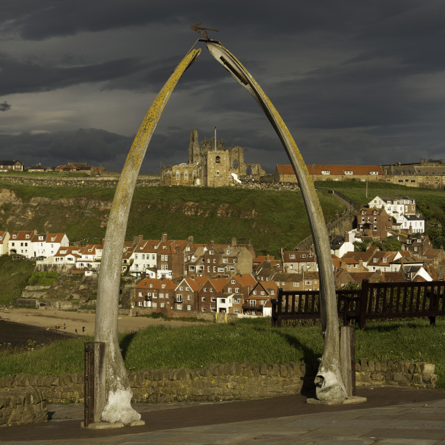 """""""The whalebone arch, Whitby"""" stock image"""