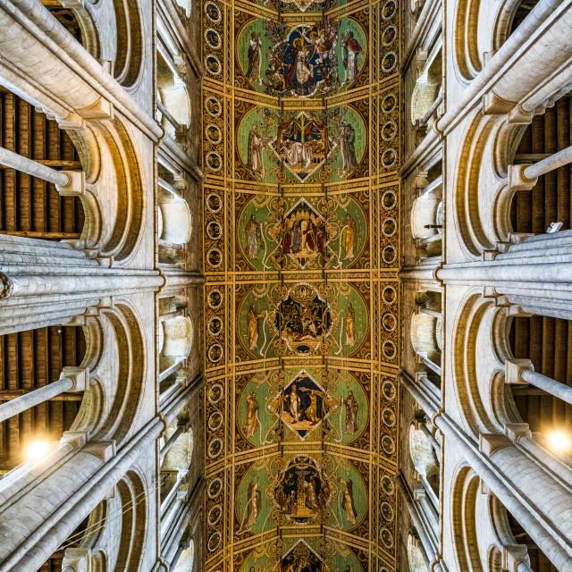 """""""Ely Cathedral Ceiling, Cambridgeshire UK."""" stock image"""