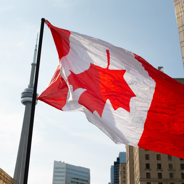 """""""Upside-down Canada Flag at March For Freedom, Toronto"""" stock image"""