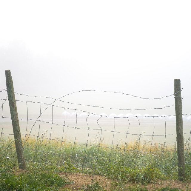 """""""Fence with foggy background"""" stock image"""