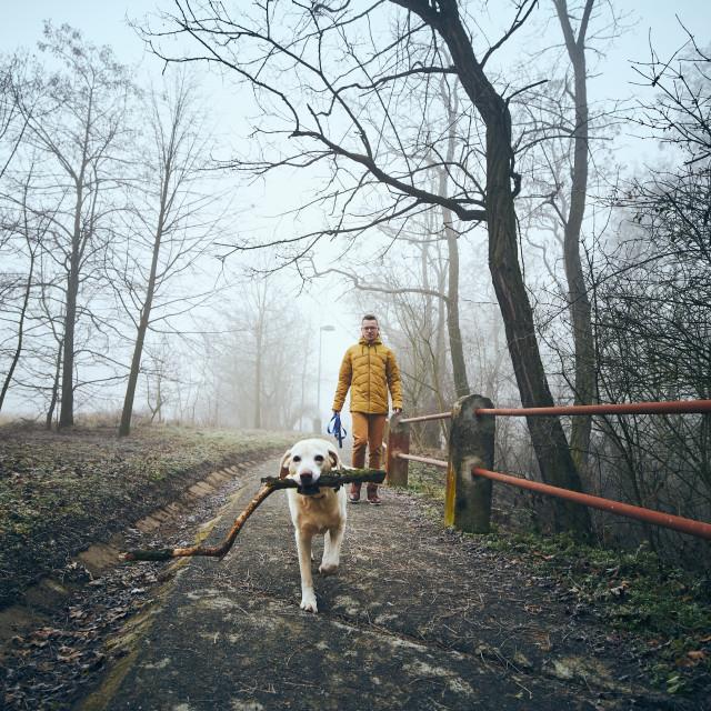 """Man with his dog walking on sidewalk in fog"" stock image"
