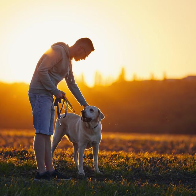 """Man with dog at beautiful sunset"" stock image"