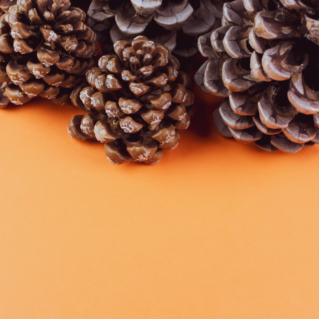 """""""Vertical shot of assorted decorative pine cones on an orange surface"""" stock image"""