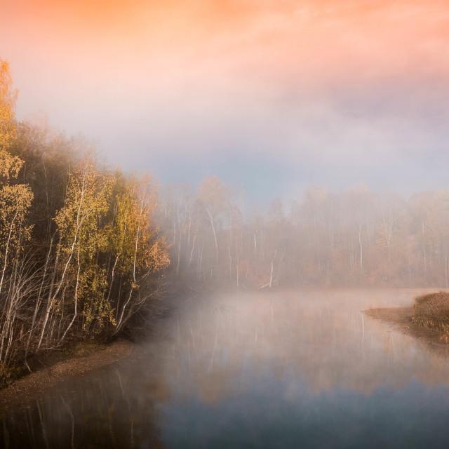 """River in the fog"" stock image"