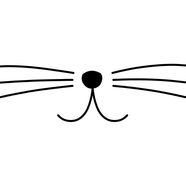 """""""Cute Cat Whiskers"""" stock image"""